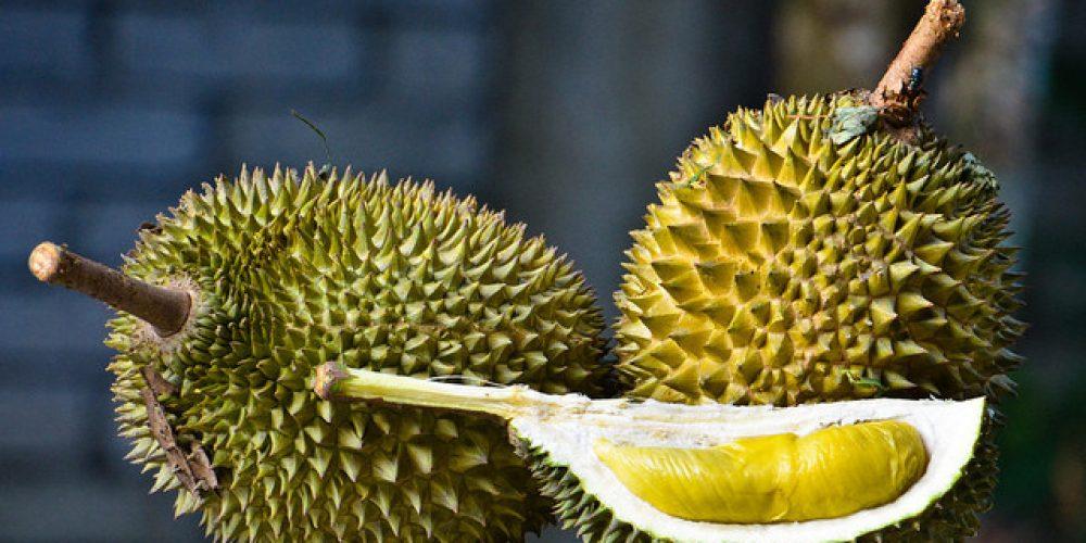 Photo of Asia Tenggara: Rakyat China Penggemar Durian