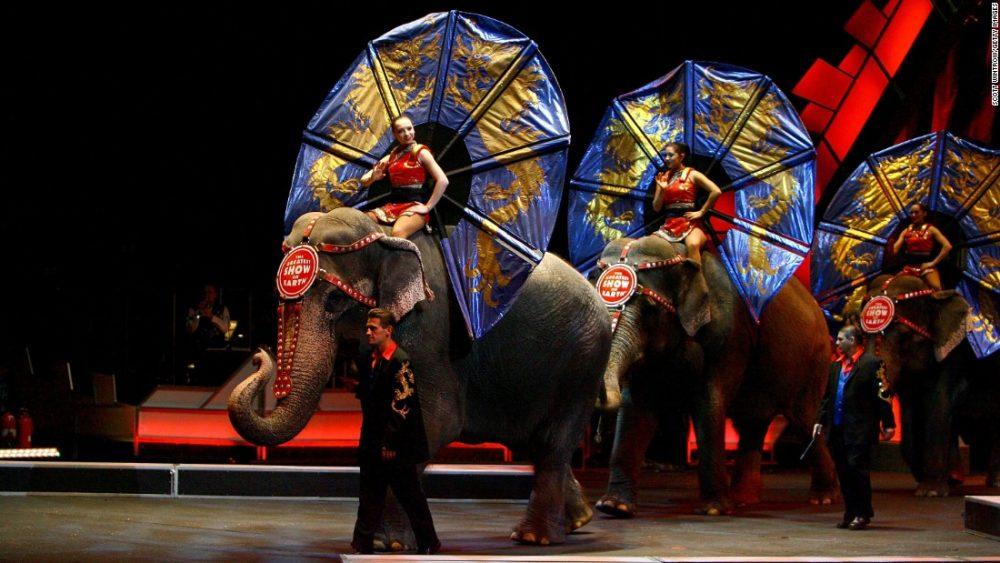 Photo of New York Haramkan Penggunaan Gajah Untuk Hiburan
