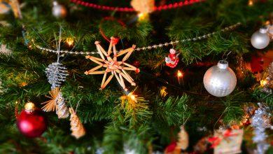 Photo of Celebrate the Holiday Spirit at Publika!