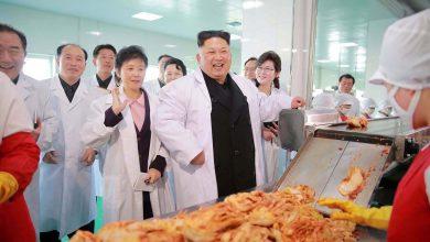 Photo of Daripada Senjata Nuklear Ke Kilang Kimchi Menggunakan Sains