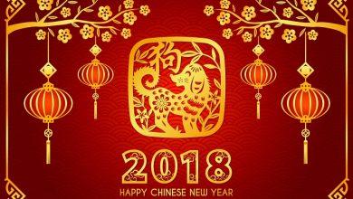 Photo of Hormat Penggunaan Simbol Haiwan Dalam Tahun Baru Cina