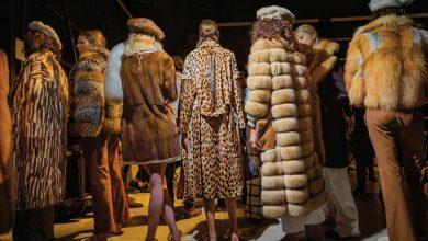 Photo of Usaha Menyekat Penggunaan Bulu Haiwan Dalam Fesyen