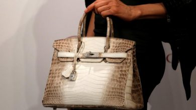 Photo of What Makes Hermès Birkin A Symbol of Wealth?