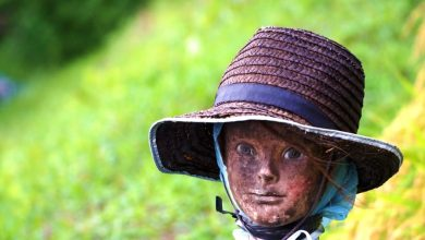 Photo of Japanese Farmers Plant Creepy Mannequin Heads In Their Fields. Why?