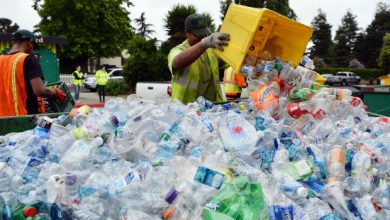 Photo of Illegal Plastic Recycling Centres Are Harming The Environment