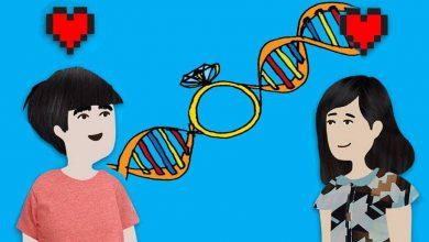 Photo of Bagi Yang Mahu Berkahwin, Cuba Dapatkan Ujian DNA