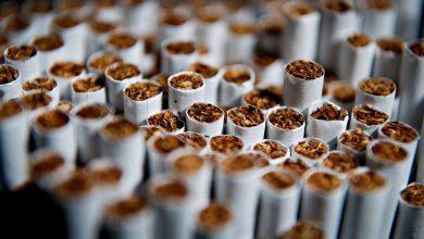 Photo of Penjualan Rokok Haram Tertinggi Di Dunia Adalah Di Malaysia?