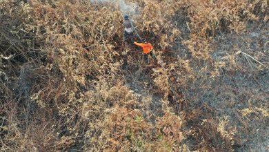 Photo of Indonesia Ikrar Untuk Dakwa Syarikat Yang Lakukan Pembakaran Haram