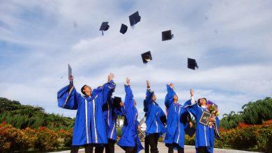 Photo of 38 Program Pengajian Digugurkan Dari Universiti Awam