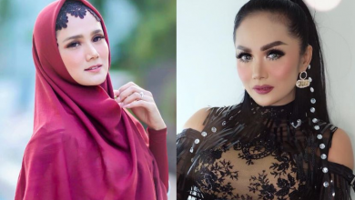 Photo of Krisdayanti, Mulan Jameela Antara 14 Artis Yang Menjadi Ahli Parlimen Indonesia