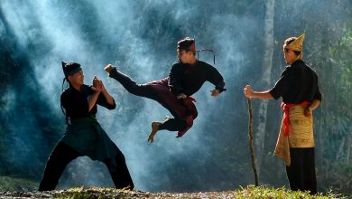 Photo of Perbezaan Silat Malaysia & Pencak Silat Indonesia Yang Kedua-duanya Diiktiraf UNESCO
