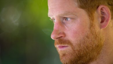 Photo of The triggers: What happened to Prince Harry?