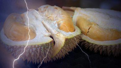 Photo of Durian Berpotensi Mengecas Peranti Elektronik Di Masa Depan?