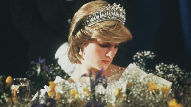 Photo of Wawancara Kontroversi 1995 Antara Puteri Diana Dan BBC Disiasat
